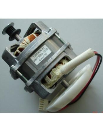 Mотор 230V 100W...
